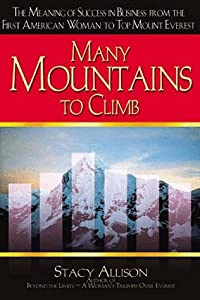 Many Mountains to Climb: The Meaning of Success in Business from the First American Woman to Top Mount Everest