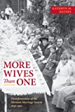 More Wives Than One: Transformation of the Mormon Marriage System, 1840-1910