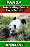 Panda! Interesting Panda Facts for Kids :Book For Kids 4-6