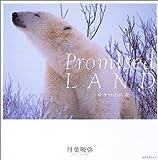 Promised LAND―シロクマの約束