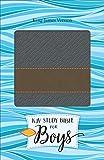 img - for KJV Study Bible for Boys Granite/Copper, Metallic Design Duravella book / textbook / text book
