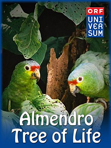 Almendro - Tree of Life