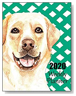 Labrador Retriever 2020 Dated Weekly Planner - A fun canine-themed planner to help any dog lover stay organized and keep track of activities on a daily, weekly, and monthly basis from January to December 2020.