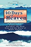img - for 40 Days in Heaven: The True Testimony of Seneca Sodi's Visitation to Paradise, the Holy City and the Glory of God's Throne book / textbook / text book