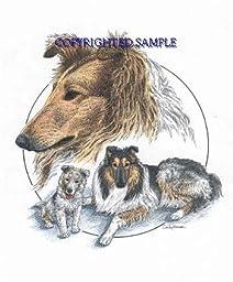 Collie - Trio Image by Cindy Farmer