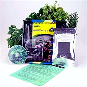 Medicinal Herb Garden Starter Kit- Start Growing Fresh Medicine Herbs