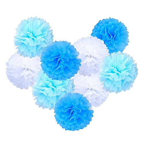 eboot seidenpapier pom poms pompoms blume f r hochzeit dekoration party deko 10 zoll 9 st ck. Black Bedroom Furniture Sets. Home Design Ideas