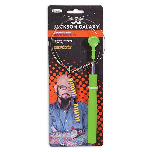dos-toy-jackson-galaxy-mojo-maker-ground-wand-direct-interactive-wire-play