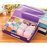 Shag Bra Storage Box / Underwear Storage Organizer / Panty Storage Organiser