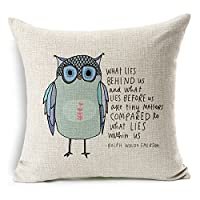 "Decorbox Cotton Linen Square Throw Pillow Case Decorative Cushion Cover Pillowcase Owl Sayings 45"" * 45"" by Luxbon"