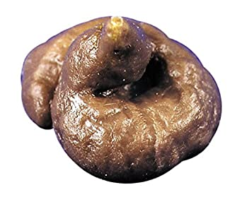 Dog Dunit Mini Poodle Fake Poop Gag Prank
