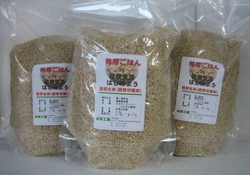 発芽ごはんde健康生活☆水に30分浸けるだけで発芽玄米 6kg(2kg×3袋)