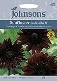 Johnsons UKJOFL Sunflower Black Magic F1
