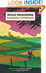 While Wandering: A Walking Companion