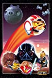 Poster Angry Birds Star Wars Collage with Accessories