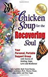 img - for Chicken Soup for the Recovering Soul: Your Personal, Portable Support Group with Stories of Healing, Hope, Love and Resilience (Chicken Soup for the Soul) by Jack Canfield (2012-08-28) book / textbook / text book