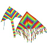BeMax Twins Rainbow Delta Kites flyer Easy to Assemble Launch and Fly Kite - 1600