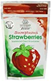 Forest Feast Mini Doypacks Sumptuous Strawberries 75 g (Pack of 4)