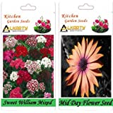 Alkarty Sweet William Mixed And Mid Day Seeds Pack Of 20 (Winter)