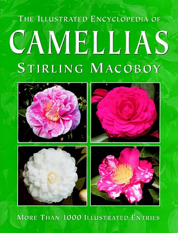 the-illustrated-encyclopedia-of-camellias