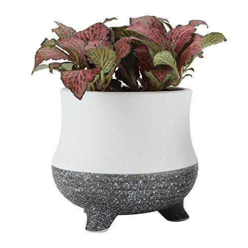 t4u-95-cm-decoration-moderne-en-ceramique-petit-pot-pot-de-fleurs-jardiniere-succulente-no-6-parent-