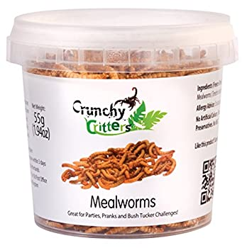 Mealworms - 55 grams