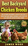 Best Backyard Chicken Breeds: The Ultimate Beginner's Guide to the  Top 15 Hens that are Family-Friendly,  Lay Plenty of Eggs and are  Suited to Small Yards (English Edition)