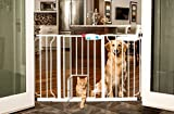 Carlson 0930PW Extra-Wide Walk-Thru Gate with Pet Door, White by Carlson Pet Products