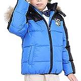 Dr.mama 2016 nuevo abrigo del otoño/invierno con sombrero abrigo de pluma grueso cálido para esquí senderismo acampada para niños