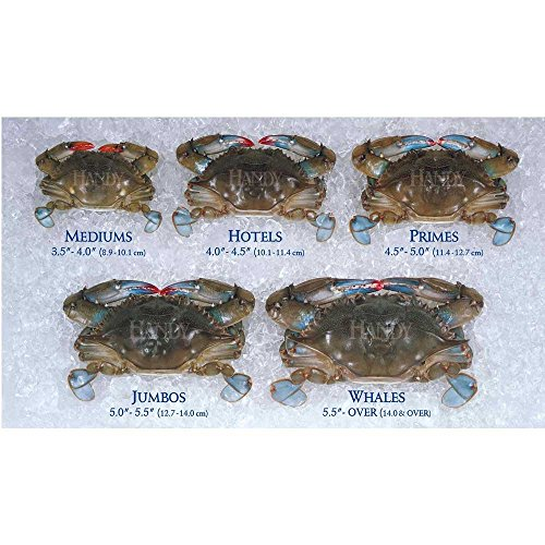 Handy Soft Shell Jumbo Crab, 3.5 Ounce -- 24 per case.