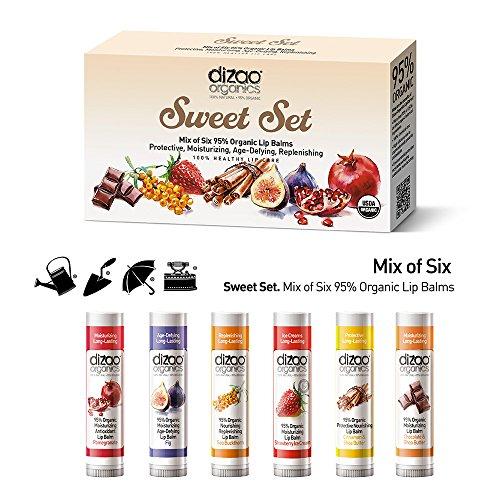 gift-set-of-organic-lip-balms-dizao-organics-6-balms-in-pack-100-natural-95-organic-ingredients-prot