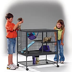 Midwest 141 Ferret Nation Single-Level Ferret Cage with Ramps, 36 Inches by 25 Inches by 38.5 Inches