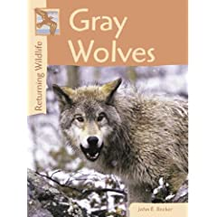 Gray Wolves (Returning Wildlife)