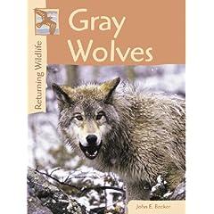 Gray Wolves (Returning Wildlife)