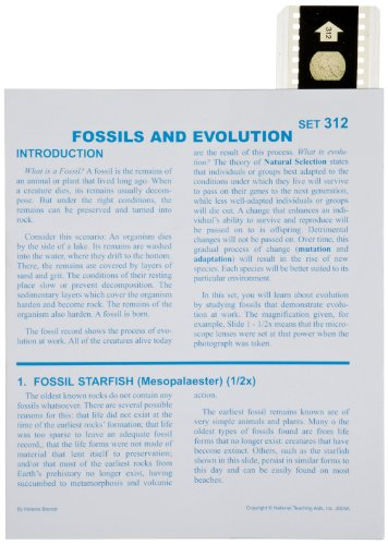 American Educational Microslide Fossils and Evolution Lesson Plan Set