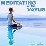 Meditating on the Vayus | Sue Fuller