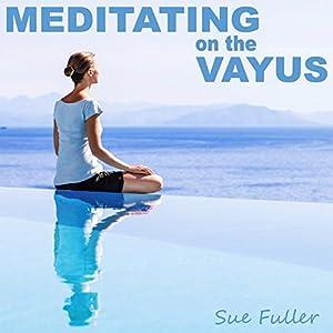 Meditating on the Vayus Speech