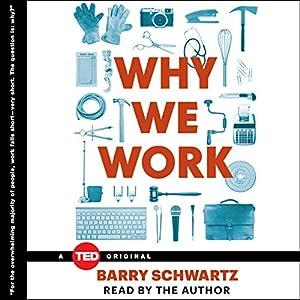 Why We Work Audiobook