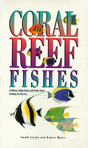 coral-reef-fishes