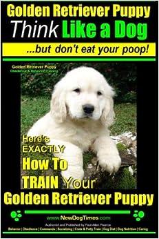 Golden Retriever Puppy  Think R Ann Johnson Golden Retriever