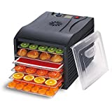 Deshidratador de alimentos BioChef Arizona con 6 bandejas - Puerta transparente, bandejas móviles, BPA Free y Enzyme Protection Technology (Negro)