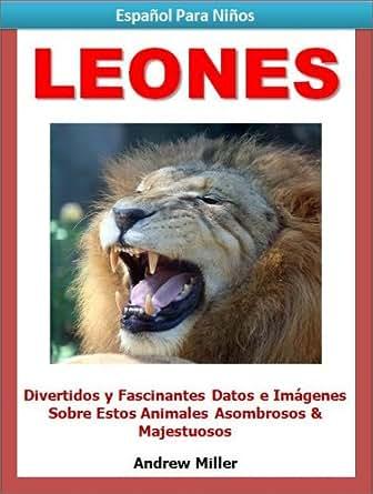 Español Para Niños: Leones - Divertidos y Fascinantes Datos e