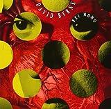 Rei Momo by David Byrne (1989-05-03)