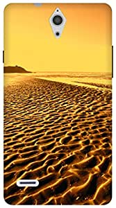 The Racoon Grip By The Beach Gold hard plastic printed back case / cover for Huawei Ascend G700