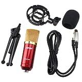 AGPtek Red Condenser Sound Studio Recording Microphone Mic Dynamic +Shock Mount New
