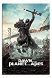 Dawn Of The Planet Of The Apes Poster Gloss Laminated - 91.5 x 61cms (36 x 24 Inches)
