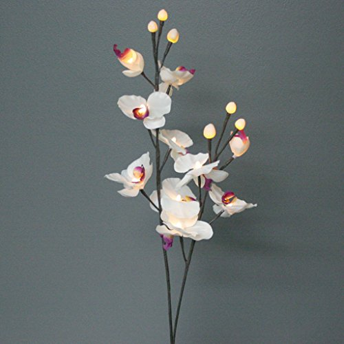 The Light Garden WTORQ16 Lighted White Orchids with 16 Bulbs, 31-Inch Tall (Electric Branch Lights compare prices)