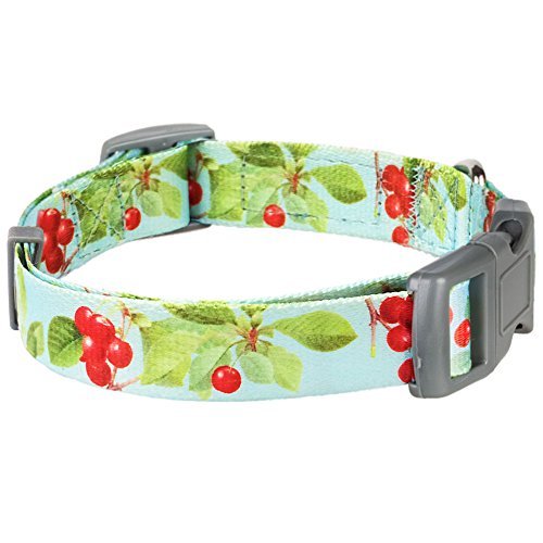 "Blueberry Pet Collars For Dog The Cherry Garden Turquoise Designer 3/4"" Medium Basic Polyester Nylon Medium Dog Collar"