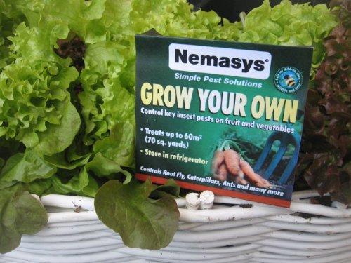 nemasys-natural-fruit-and-veg-protection-nematodes