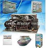 GOWE Cooling unit for ice cream fridge commercial deep freezer mini freezer display cabinet showcase supermarket freezer